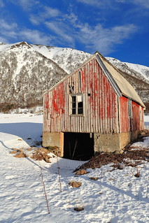 Old boat shed-foot of Buksnesfjellet mount-E.side Risoysundet-Hinnoya island-Vesteralen-Nordland county-Norway. 0039