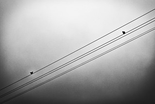 communication (by means of electrification)