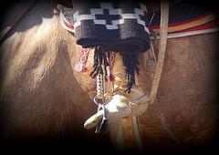 Detalles (Eduardo Amorim) Tags: botadepotro botagarrãodepotro botadegarrão potrera gaucho gauchos gaúcho gaúchos cavalos caballos horses chevaux cavalli pferde caballo horse cheval cavallo pferd cavalo cavall 馬 حصان 马 лошадь crioulo criollo crioulos criollos cavalocrioulo cavaloscrioulos caballocriollo caballoscriollos estribo estrivo stirrup étrier staffa steigbügel estribera recado recao loro loros poncho pala pilchas pilchasgauchas apero platería plateríacriolla ayacucho provinciadebuenosaires buenosairesprovince argentina sudamérica südamerika suramérica américadosul southamerica amériquedusud americameridionale américadelsur americadelsud eduardoamorim