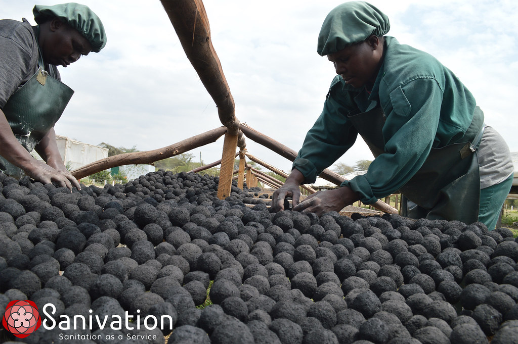 Sanivation Briquettes