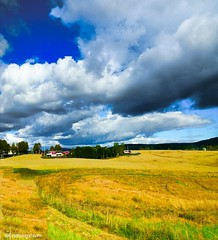 Colors, what would we do without them? (evakongshavn) Tags: 7dwf landscape landscapephotography landscapelovers landschaft landskap beautyinnature natur nature naturnature naturbilder naturephotography naturelovers naturaleza naturphotography yellow blue colorful