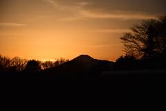 20170221_013_2 (まさちゃん) Tags: 富士山 シルエット silhouette