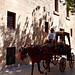 Horsecab in Mdina