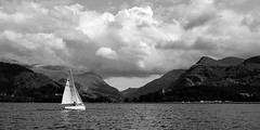 The lonely life of a lake sailor (chrisroach) Tags: wales countries llamberis porthmaddog uk bala water sail sailing blackwhite bw blackandwhite