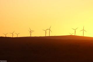 Emu Dows Wind Farm, Badgingarra WA