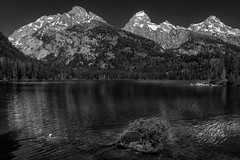 Bradley Lake (Grand Teton National Park) (Kᵉⁿ Lᵃⁿᵉ) Tags: beavercreek geo:lat=4370083702 geo:lon=11075174823 geotagged moose unitedstates usa adventure bw baw blackwhite blackandwhite bnw bradleylake explore exploring grandteton grandtetonmountainrange grandtetonnationalpark grandtetons hiking httpsenwikipediaorgwikigrandtetonnationalpark lake lakereflection landscape monochrome monotone mountain mountainpeak mountainrange mountainview mountains nationalpark nationalparkservice naturalwonder nature nikon nikond800 outdoor plant plants reflection scenic scenicspot scenicview snow snowcap snowcapmountain spring spring2017 teton tetoncounty tetonmountainrange tetons tourism touristattraction travel travelblog travelblogphoto travelphoto travelphotography travelingadventures usnationalpark usnationalparkservice unitedstatesnationalpark vista water waterscape whiteblack worldadventures worldtravel wy wyoming