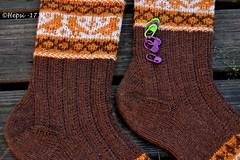 2017-08-04 Kanteletar (6) (hepsi2) Tags: tds2017 tds2017kanteletar kanteletar socks sukat colorwork strandedknitting