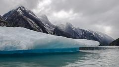 Alaskan Iceberg (t conway) Tags: