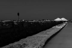 IMG_8324 (SalvoGulisanoFotografo) Tags: selinunte sicily greektemple
