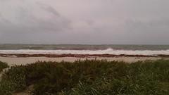 20170909_094555 (immrbill3) Tags: beach florida fortlauderdale ftlauderdale floridabeach ocean