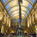 Dinosaurier im Natural History Museum London