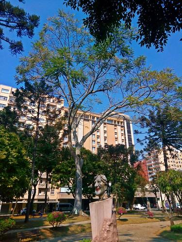Praça Santos Andrade - Curitiba/PR