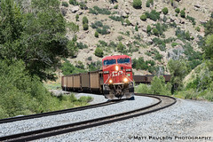Northern visitor through the gooseneck (matt c paulson) Tags: railfan utah railroad train locomotive freight manifest rails trains tracks wanderlust outdoors travel canadianpacific americanwest kyune pricerivercanyon denverriogrande drgw denverandriograndewestern utahrailway utahrailfan utahrailroad