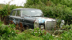 Mercedes W111 (vwcorrado89) Tags: mercedes w111 w 111 benz mercedesbenz s se rust rusty abandoned wreck old car