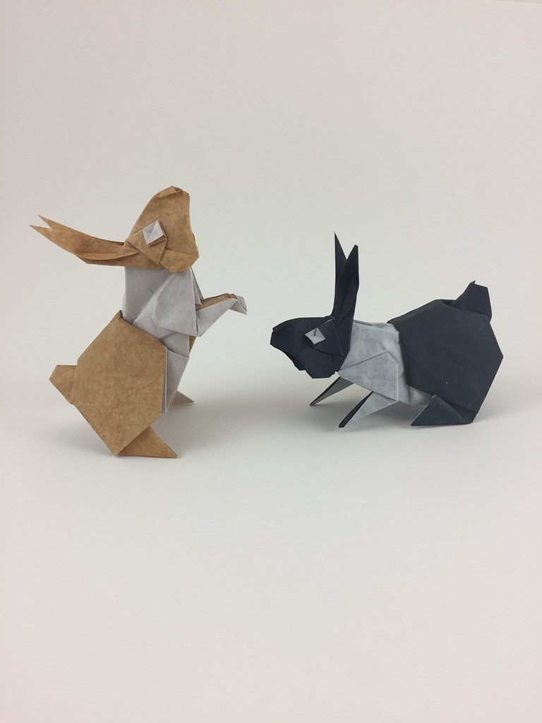 The Worlds Most Recently Posted Photos By Quentin Origami Flickr Advanced Fox Instructions Diagram Of Squirrel Bunnies Tags