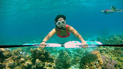 Subwing Gili Islands (niceholidayphotos) Tags: