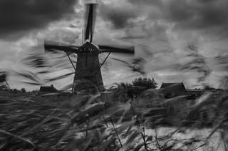 La força del vent/The force of the wind