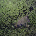 Deforestation as seen by drone thumbnail