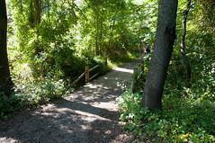 Terrapin Nature Area, Stevensville MD 21 (Larry Miller) Tags: naturepark conservation chesapeakebay maryland 2017