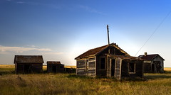 The Man Shack (TigerPal) Tags: saskatchewan sask prairies plains prairie grassland summer dustyroad gravelroad backroads exploration goldenhour glow golden dummer abandoned forgotten rural ruraldecay farmhouse farm shed barn shack ruin ghosttown
