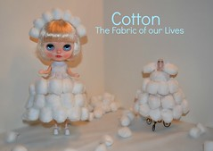 BaD Aug 30 - Cotton the Fabric of Your Lives