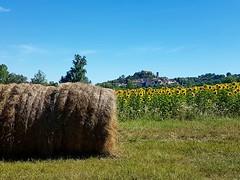Paysage gersois (Gers Gascogne Tourisme) Tags: gers sudouest campagne nature champ tournesols castelnaubarbarens village tourismegers