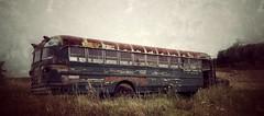 the final destination... (HTT) (BillsExplorations) Tags: abandonedtruck rust abandoned decay truckthursday forgotten wrecked bus schoolbus destination snapseed texture
