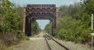 Vintage Lens & Vintage Bridge