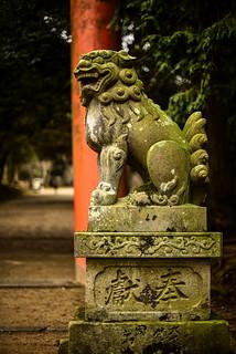 手向山八幡宮の鳥居の前にある狛犬 - Guardian lion dog statue (Komainu) in front of the enterance to Tamukeyama Hachiman Shrine