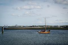 Urlaub IJsselmeer - Lauwersoog-1