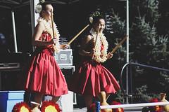 hula dancers at 2017 live aloha hawaiian cultural festival seattle (mohini :: mangopowergirl.com) Tags: 10th live aloha festival hawaiian hawaii seattle seattlecenter mural amphitheater muralamphitheatre summer september 2017 dance music cultural hula ukulele livealohahawaiianculturalfestival dancers nāleoʻohawaiʻihālauhulapulamahiaikalikolehua pacific island culture halau bamboo puili slit sticks photojournalism livealoha206 livealoha 2017livealoha livealoha2017 2017livealohafestival