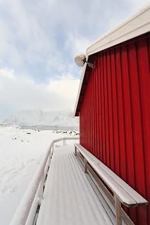 Tourist rorbu-traditional fishing cottage-Reinebringen and other mounts background. Hamnoy-Reine-Moskenesoya-Lofoten-Norway. 0355