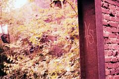 Landschaftspark Duisburg Nord (somekeepsakes) Tags: ruhrpott ruhrgebiet deutschland europa germany landschaftsparkduisburgnord xpro film yashicaelectro35gx lomo duisburg lomographytungstenx64 industriekultur rangefinder analogue lapadu 2014 europe analog crossprocessed