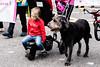 paws (pamelaadam) Tags: 2017 aberdeen digital scotland summer august animal dog people lurkation visions meetup fotolog thebiggestgroup