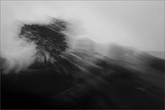 memoirs of mandu - xiii (nevil zaveri (thank U for 15M views:)) Tags: zaveri india madhyapradesh trees monochrome blackandwhite bw motionblur conceptual photography photographer images photos blog stockimages photograph photographs nevil nevilzaveri stock photo fineart abstract ruins architecture heritage islamic afghan monsoon baori stepwell monument longexposure artburt02