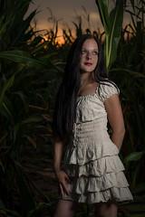 Steffi 2 (xfoTOkex) Tags: portrait girl women outdoor sunset corn cornfield field green orange long black hair nikon d800 dress