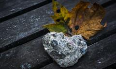 Naturlig konst (My Photolifestyle) Tags: fs171001 konst fotosöndag