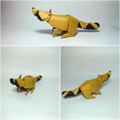 Raccoon - designed by Quentin Trollip (Nguyễn Tuấn Tài) Tags: