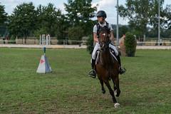 A9903675_s (AndiP66) Tags: springen derby aesch bl baselland 2017 juni june 13august2017 pferd horse schweiz switzerland kantonbaselland cantonofbaselland concours wettbewerb horsejumping springreiten pferdespringen equestrian sports pferdesport sport sony alpha sonyalpha 99markii 99ii 99m2 a99ii ilca99m2 slta99ii sony70400mm f456 sony70400mmf456gssmii sal70400g2 amount andreaspeters