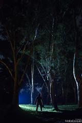 Workshop Light Painting Punta Indio (Matias Ezequiel Pascualini) Tags: argentina nikon d3200 flickr amazing photo exterior lugares noche nocturna fotografia detalles iluminacion workshop silueta lactea illumination buenosaires puntaindio airelibre verde arbol bosque forest wood
