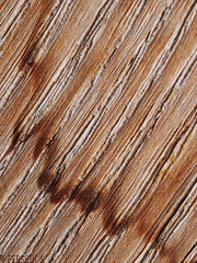 Old wood (PershinS) Tags: macromondays wood texture memberschoiceabstractmacro
