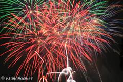 _IMG5956.jpg (y.takahashi84) Tags: hanabi fireworks 花火 さいたま urawa 浦和 東浦和 saitama 日本の夏 summer japan