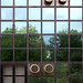 Squares, circles and reflections