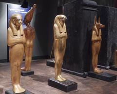 ORNG8074 (David J. Thomas) Tags: stlouissciencecenter science technology museum saintlouis missouri travel egypt kingtut tutankhamun replicas