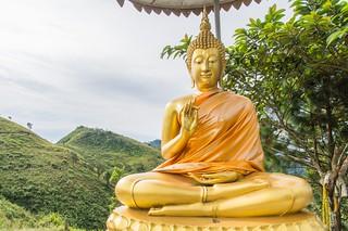 doi pha tang - thailande 19