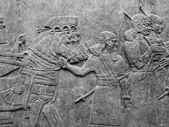 Assyrian Galleries-British Museum (Chris Draper) Tags: horses monochrome blackandwhite assyria assyrian sculpture reliefs museum archaeology britishmuseum carved carving carvedpanel stone mythical mythology culture ancientculture