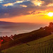 Sunset at Lavaux by Geneva Lake