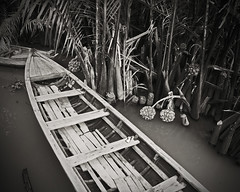 - (Francoise100) Tags: asien asie asia vietnam delta mekongriver barque boat water wasser bw wooden monochrome nature simple vignette bnw nb