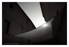 The wing (GP Camera) Tags: nikond80 nikonafsdx1855mmf3556gvr cover copertura veil velo street strada buidings edifici sun sole sky cielo light luce lightandshadows lucieombre shadows ombre sunsetlight lucealtramonto summer estate allaperto minimal minimale vignetting shades sfumature lightness leggerezza silence silenzio quiet quiete trascendental trascendentale depthoffield profonditàdicampo textures trame bw biancoenero monochrome monocromo abstract astratto streetphotography fotografiadistrada whiteframe cornicebianca italy italia marche darktable gimp opensource freesoftware softwarelibero digitalprocessing elaborazionedigitale