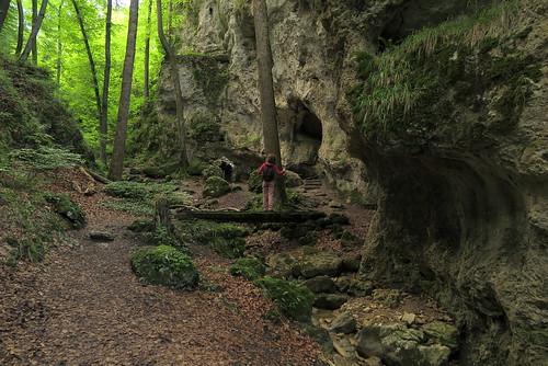 Ruine Fürstenstein_04